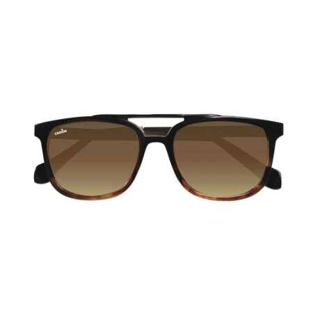 Sunglasses in black and brown